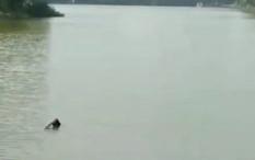 Pesawat Latih Jatuh di Danau Buperta Cibubur, Pilot dan Awak Selamat
