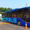 Tahun Ini Masyarakat Jakarta Bisa Rasakan Naik Bus Listrik