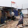 Penggusuran Kampung Akuarium, Ahok: Itu Aset Kami