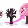 Membeli Pohon Sakura Ajaib untuk Menyambut Musim Semi