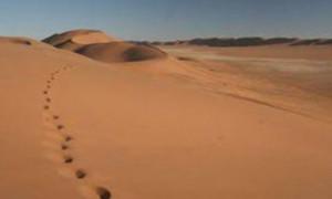 Benua Afrika Retak, Samudra Baru akan Muncul