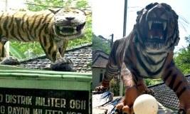 Telah Dibongkar, Ini Fakta Menarik Harimau 'Nyengir' Koramil Cisewu