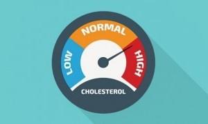 5 Obat Herbal Atasi Kolesterol Tinggi