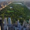 Banyak Pohon Rindang, Ini 5 Ruang Terbuka Hijau Terbesar Dunia