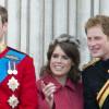Peran Putri Eugenie dalam Membaiknya Hubungan Pangeran Harry dan William