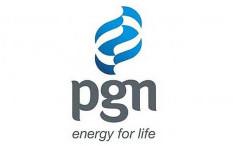 Dirut PGN ke AS, Pelesiran?