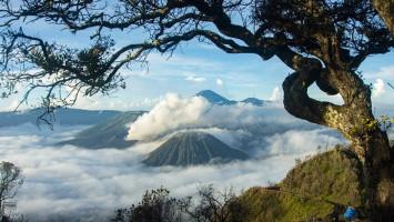 Intip Lokasi Foto 'Prewedding' Favorit Paling Hype di Indonesia