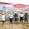 Pemprov DKI Gandeng TNI AU Kelola Lahan 6,2 Hektar di Halim