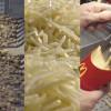 Ini Cara McDonald Membuat Kentang Goreng