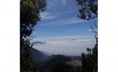 Menjelajah Eksotisme Gunung Papandayan di Garut