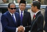 Kerjasama Indonesia - Mesir