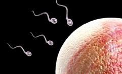 5 Tanda Pria Memiliki Sperma Tak Sehat