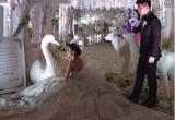 Galeri Romantis Resepsi Pernikahan Chelsea Olivia-Glenn Alinskie