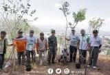 Jerit dan Tangis Iwan Fals Atas Rusaknya Alam Di Indonesia