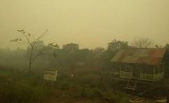 Jumlah Hot Spot Meningkat, Gubernur Kalimantan Utara Belum Tetapkan Siaga Darurat