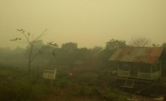 Kebakaran Hutan Kalimantan Barat Meningkat