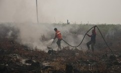 Karhutla Kembali Sebabkan Asap Tebal di Riau