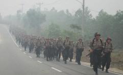 Indonesia Masih Kekurangan Ribuan Polisi Hutan