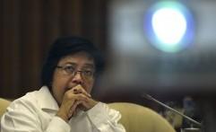 Menteri LHK: Taman Nasional Jadi Percontohan Pengelolaan Gambut