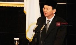 Ahok Tak Gentar Hadapi Yusril dan Adhyaksa di Pilgub DKI 2017
