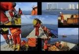 50 Ton Sampah per Hari Diangkut dari Teluk Jakarta