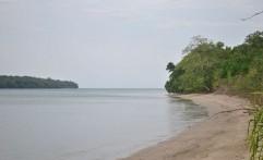 Pulau Peucang  Tempat Nikmati Pasir Putih, Terumbu Karang dan Rusa