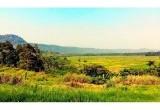 5 Wisata Kawasan Konservasi di Banten