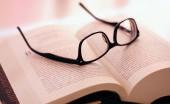 Google Beli North, Perusaahan Kacamata Pintar