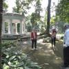 Ribuan Wisatawan Ditolak Masuk Kebun Raya Bogor