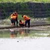 Jalur Terendam, Puluhan Perjalanan KA dari Gambir dan Senen Dibatalkan