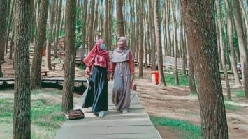 Terkendala Sinyal, Pengunjung Hutan Pinus Yogyakarta Kesulitan Akses PeduliLindungi