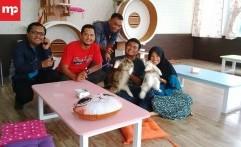Veelia Cat & Kitchen, Salon Kucing dan Kafe Pertama di Cirebon