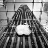 Apple Rilis Headset VR Seharga Rp42 juta?
