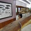 Museum Siwalima Pikat Pengunjung dengan Kreativitas Tradisional