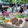 DPD Harap Revisi Otsus Papua Jilid II Jangan Hanya Kejar Tayang