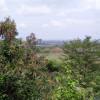 Jadwal Buka Tutup di Kawasan Gronggong Cirebon di Malam Tahun Baru