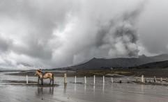 TNBTS Pastikan Banjir Lahar Dingin di Bromo Fenomena Biasa