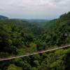 Menikmati Wisata Alam Soul-Calming nan Sejuk di Situ Gunung Sukabumi
