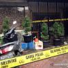 3 Orang Meninggal Ditembak di Cafe, PSBB Jakarta Lemah Penindakan
