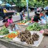 Wapres Perintahkan Pembangunan Papua Sesuai Karekter Wilayah