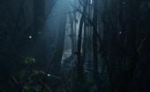Ngeri! Ini 5 Hutan Terseram di Dunia