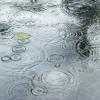 Diguyur Hujan Deras, Sejumlah Jalan di Jakarta Tergenang Air