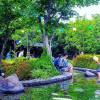 4 Rekomendasi Tempat Wisata Ramah Keluarga di Jepang
