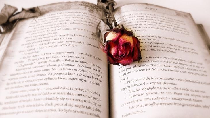 Novel-Novel Berlatar Reformasi