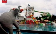 Bermain Ekstrim di Boomerang Kolam Gajah