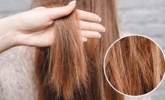 Sering Diabaikan, Kebiasaan Saat Mencuci Rambut Ini Merusak Rambut