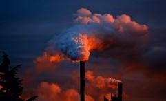 Makin Bahaya, Racun dalam Polusi Udara Perpendek Umur Anak-Anak
