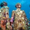 Museum Bawah Air ini Ingatkan Semua Tentang Ekosistem Laut