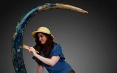 Gading Mammoth Langka Berwarna Biru Dilelang dengan Harga Fantastis