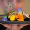 Restoran Prancis Sajikan Larva Kumbang, Enek atau Enak?